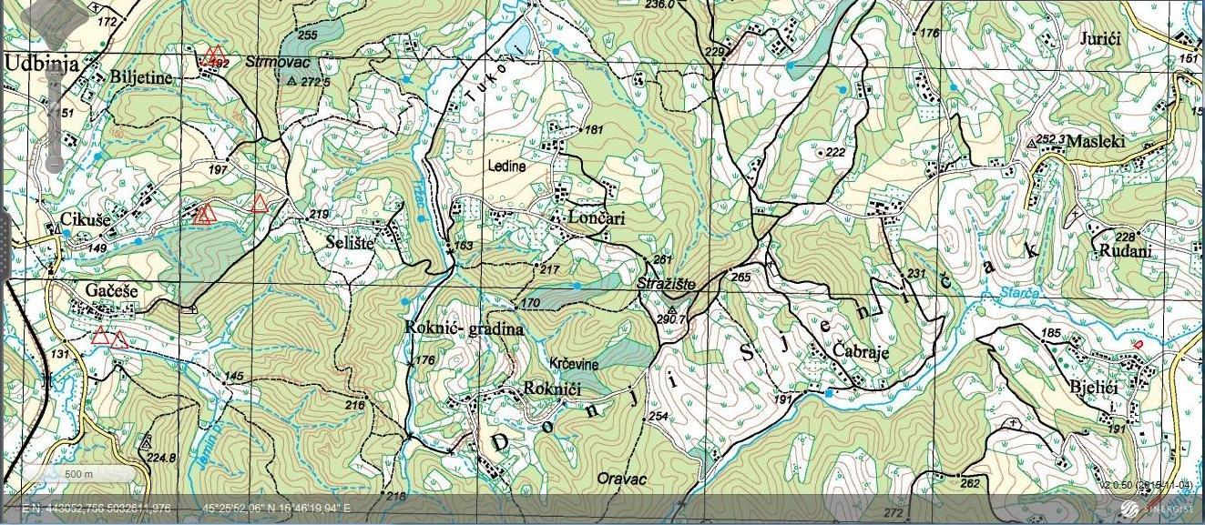 Steničnjak - topografska karta